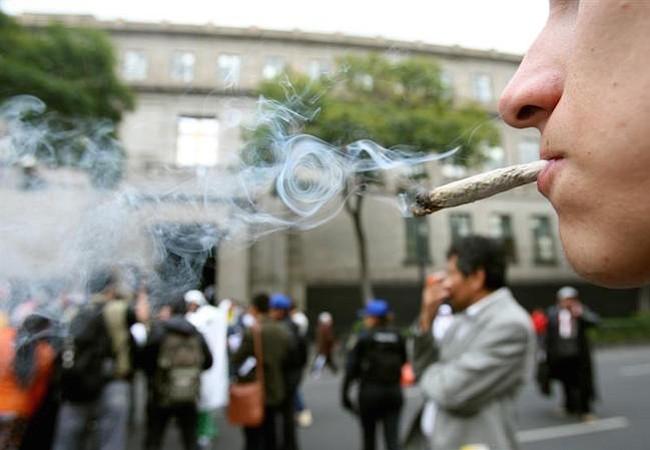 Senado mexicano aprueba regulación para el uso medicinal de la marihuana