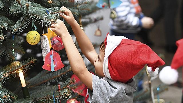 Cuando se introduce en casa el árbol de Navidad, si éste es natural, puede tener más de cincuenta especies de hongos, algunas de ellas alergénicas.