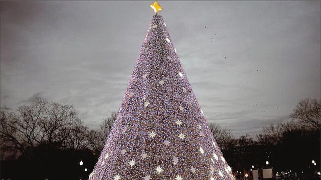 EN DC. El arbol de Navidad en la Elipse enfrente de la casa blanca es una tradición histórica que encanta a grandes y chicos.