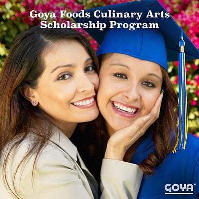 El Programa de Becas Goya de Artes Culinarias está disponible de forma competitiva a  estudiantes que ingresaran a una institución acreditada de los EEUU para cursar una carrera de dos o cuatro años en el campo de las Artes Culinarias y/o Ciencias Alimenticias.