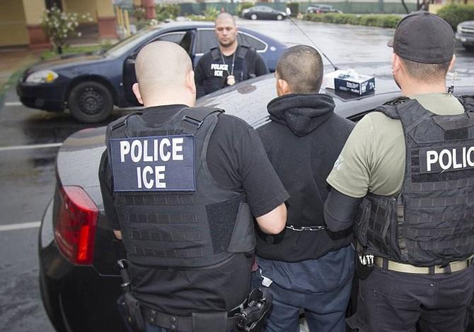 Detenidos 248 inmigrantes con antecedentes