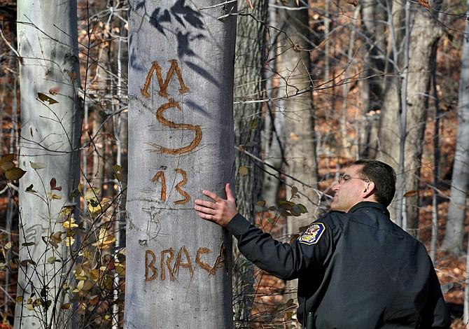 Detrás del auge aparentemente caótico de la violencia de la MS-13 hay una jerarquía estructurada