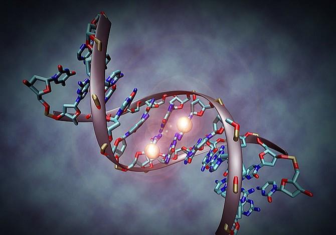 ¿Sabía que muchas enfermedades se relacionan con la epigenética?
