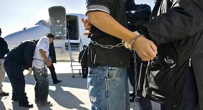 DESDE ENERO: ICE ha deportado a miles sin antecedentes criminales