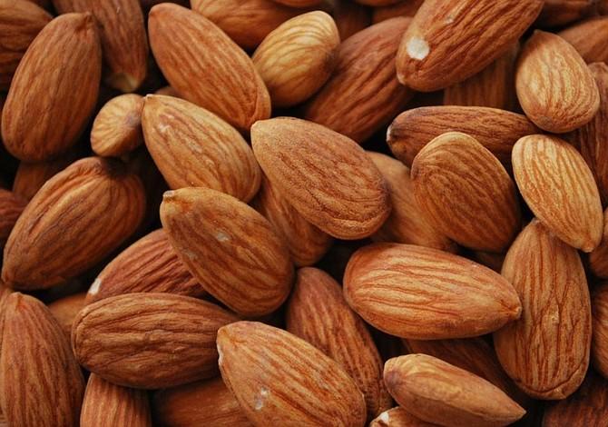 Frutos ricos en proteínas