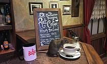 Un local en San Francisco ofrecerá a sus clientes la extraña experiencia de beber café rodeado de ratas.