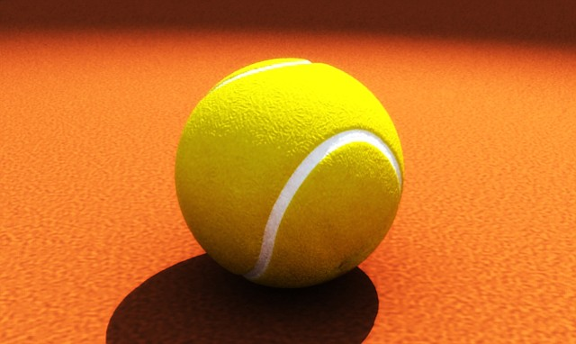 Novak Djokovic derrotó a Thiem y jugará la final del Masters 1000 de Roma