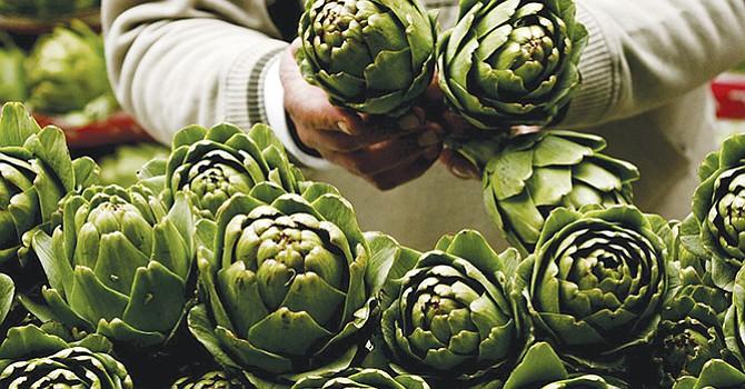 El peculiar sabor de la alcachofa proviene de la cinarina, una sustancia que promueve la secreción de bilis, lo que ayuda a mejorar la digestión de las grasas. EFE/Stefan Zaklin.