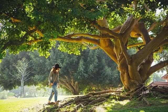 Esta es una oportunidad para que la comunidad hispana conozca más acerca de las tierras y espacios públicos que puede disfrutar.