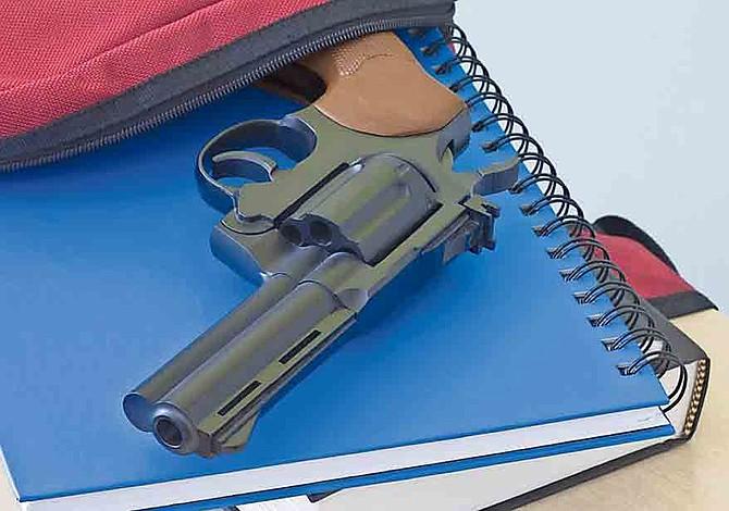 Ya se puede portar armas en colegios comunitarios