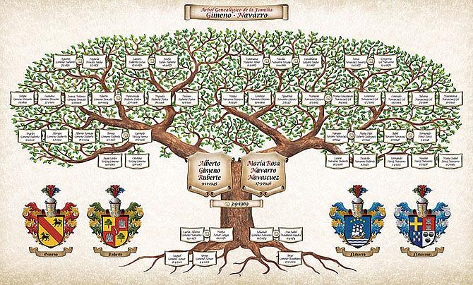 Descubriendo el árbol familiar