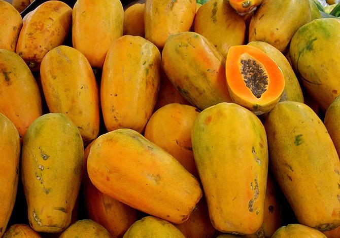 FDA investiga brotes de salmonella vinculadas a papayas