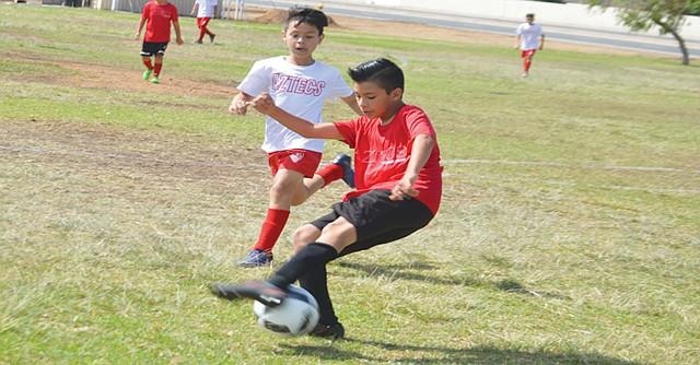 Se luchó con fuerza en todos los puntos del campo. Foto: Horacio Rentería/El Latino San Diego.