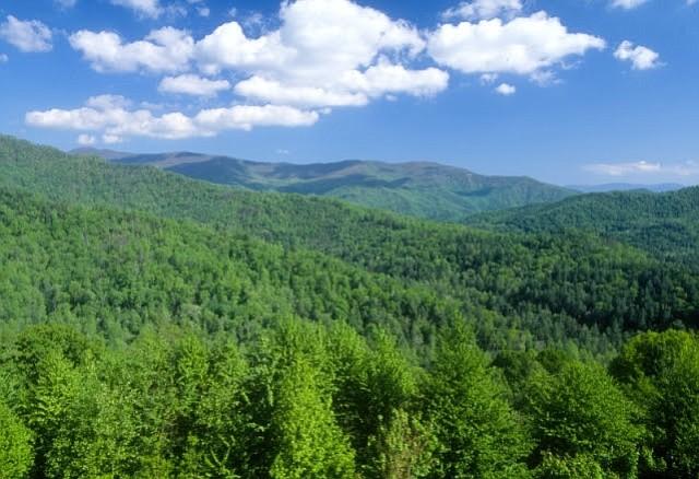 Día Nacional de Las Tierras Públicas: Una oportunidad para disfrutar y cuidar de nuestros bosques, parques y reservas naturales