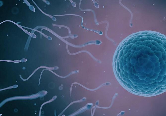 ¿Cuál de estos tratamientos de fertilidad es mejor para ti?