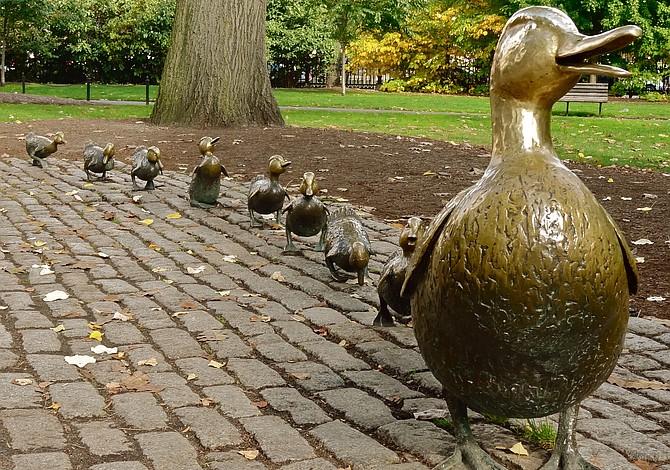 Fiesta familiar en el Public Garden por el cumpleaños 30 de los patitos