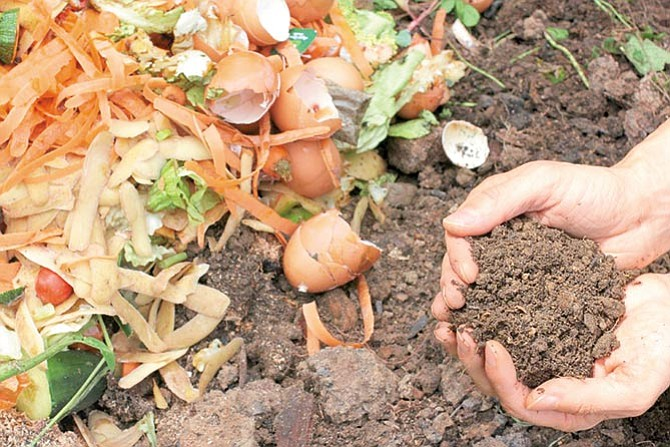 Aprovechando los desechos orgánicos
