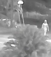 La imagen de una persona que estuvo cerca del lugar y la hora de uno de los homicidios