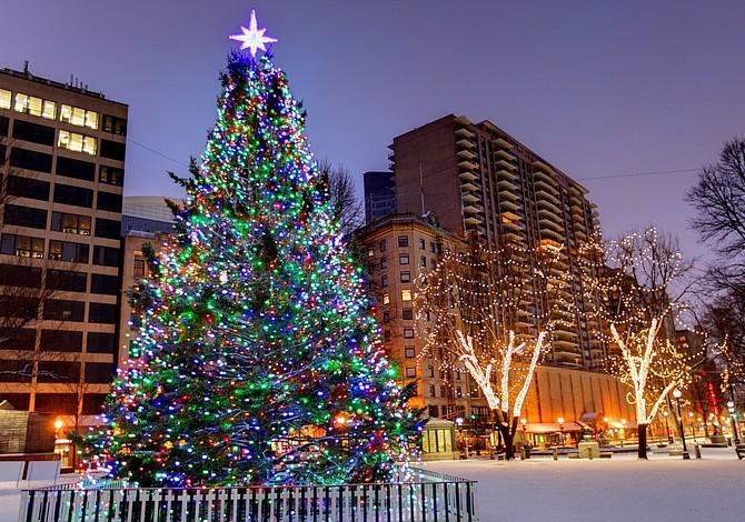 6 eventos de encendidos de árboles para dar inicio a la temporada de fiestas
