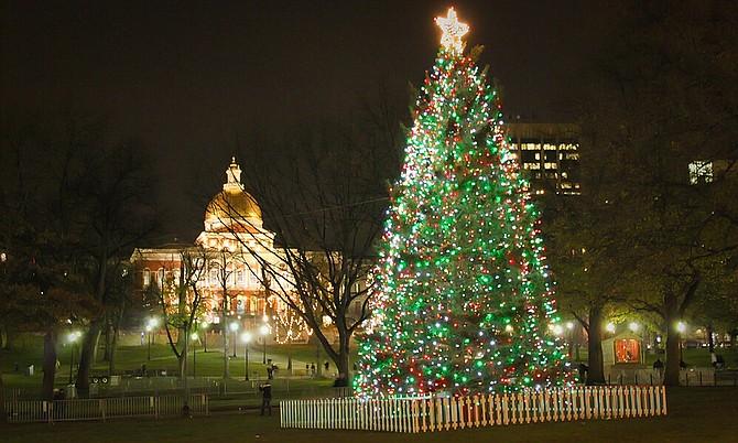 Iluminación del Árbol de Navidad del Boston Common