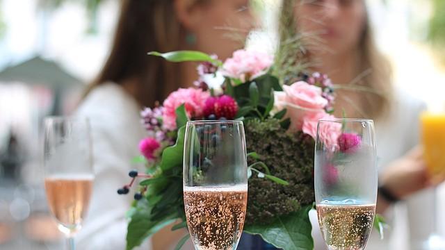 Tragos para amenizar la velada y acompañar los aperitivos