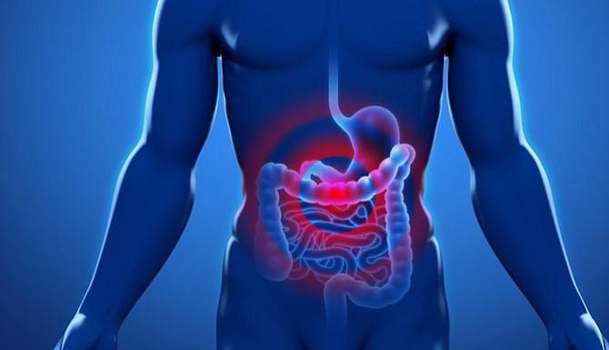 Científicos curan ratones con cáncer de colon y los inmunizan