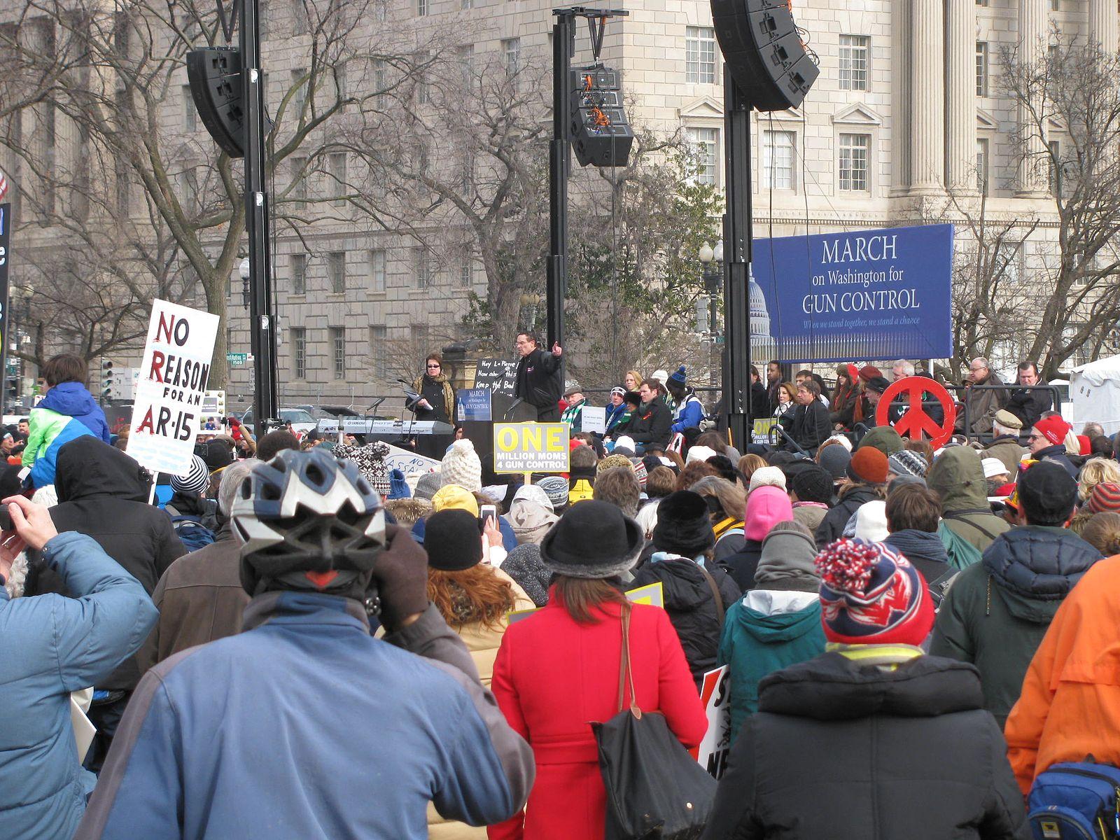 Miles marcharon en las calles de Washington, DC por un mayor control en la posesión de armas el 26 de enero de 2013.
