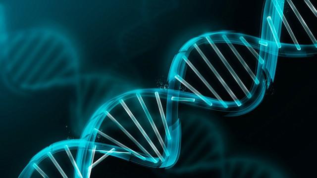 ¿Quisieras que te hicieran pruebas genéticas como parte de tu chequeo anual?