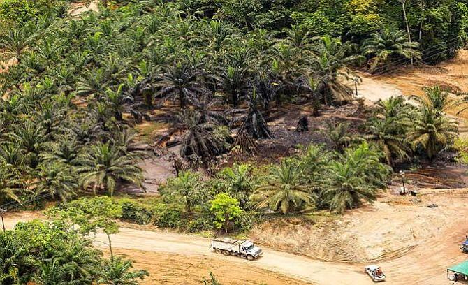 Colombia: Investigan a presidente de Ecopetrol por emergencia en el pozo Lizama