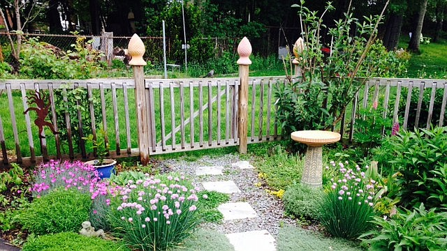 """Richard Chalfin y su esposa Joyce fueron los ganadores del primer lugar para la categoría de jardín grande en el concurso """"Garden Contest"""" de la Alcaldía de Boston en 2015"""