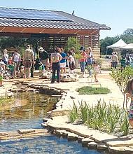 Ladybird Johnson Wildflower Center