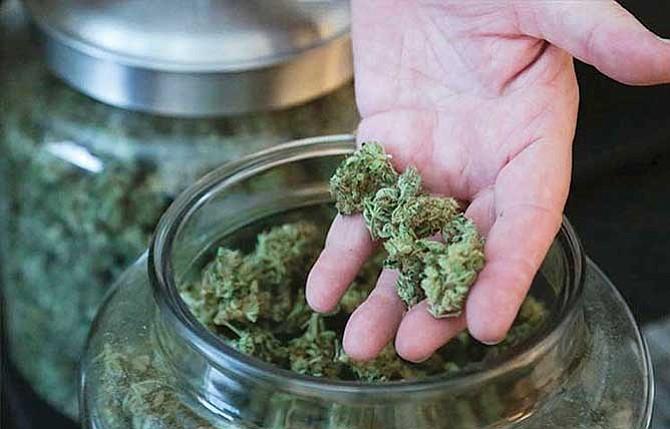 Conceden tercer amparo a uso lúdico de la marihuana