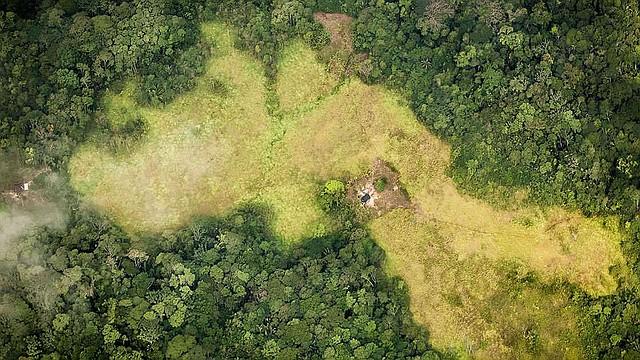 COLOMBIA.  La paradoja de la paz: cuatro historias de destrucción ambiental tras el acuerdo con las Farc
