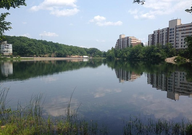2 ahogamientos y un tiroteo fatal, el saldo del 4 de julio en Boston