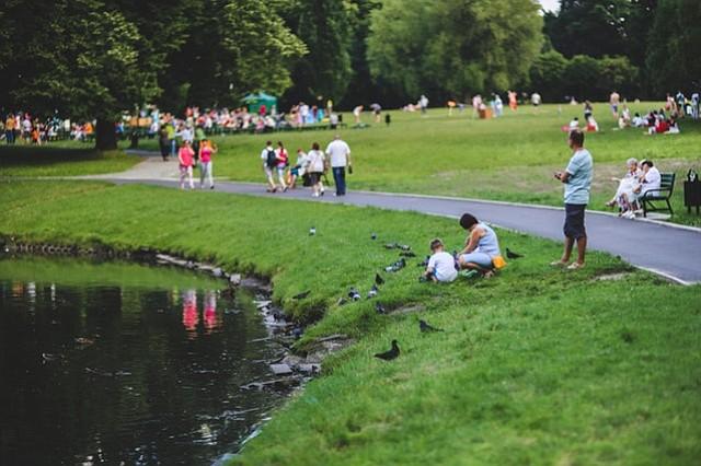 Eventos en los parques del condado Montgomery