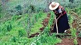 Apoyo total al agro