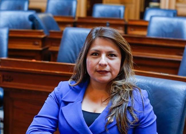 Líder peruana en Virginia celebra con nostalgia y compromiso