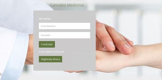 SALUD. Nueva plataforma ayudará a la obtención de licencia y el registro de pacientes en el Programa de Cannabis Medicinal