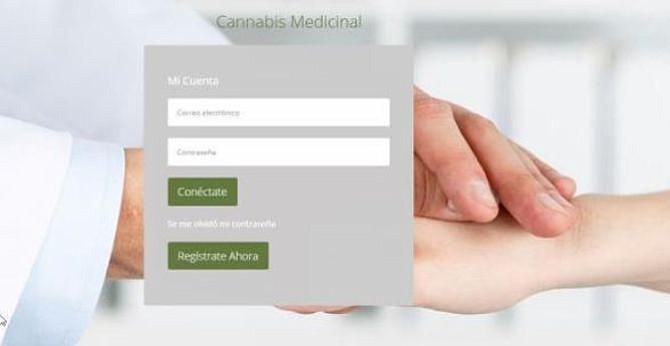 Gobernador de Puerto Rico anunció nueva plataforma digital para la mariguana medicinal