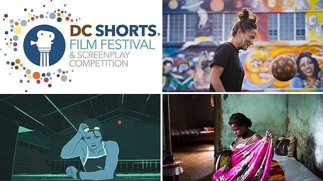Fotos: Cortesía de DC Shorts