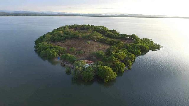 DECISIÓN. Este decreto reformó el Código Civil el 24 de agosto anterior, para prohibir que los extranjeros adquirieran islas, islotes, cayos o cualquier territorio insular.