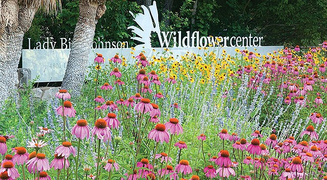 Lady Bird Johnson Wildflower Center.