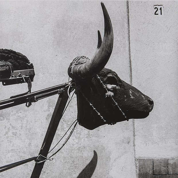 Little Bull, Coyoacán, Mexico City / Torito, Coyoacán, Ciudad de México, 1982