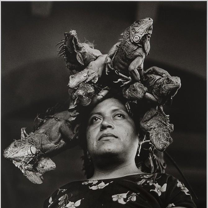 Our Lady of the Iguanas, Juchitán, México / Nuestra Señora de las Iguanas, 1979 Graciela Iturbide (Mexican, born in 1942) Photograph, gelatin silver print *Daniel Greenberg and Susan Steinhauser *© Graciela Iturbide *Courtesy, Museum of Fine Arts, Boston