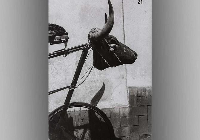 MFA presenta la primera exposición en la Costa Este de las fotografías de Graciela Iturbide
