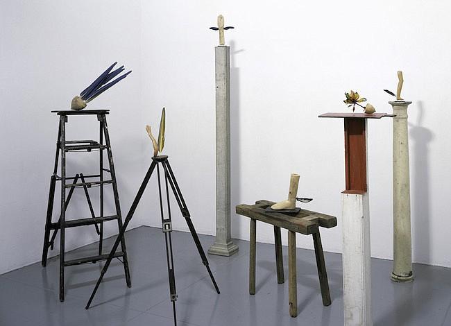 Arte contemporáneo en la Colección Patricia Phelps de Cisneros
