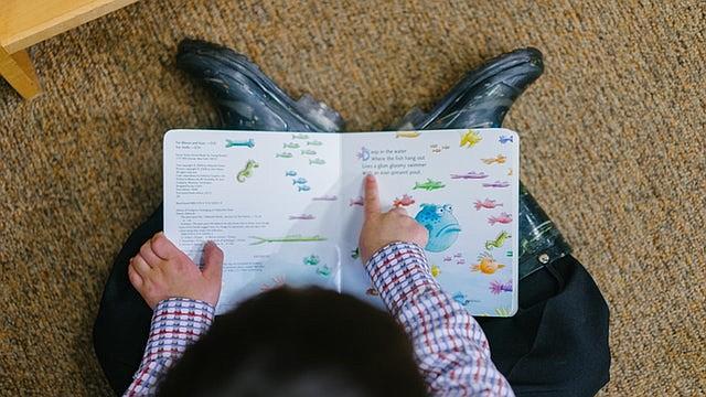 El ABC de los retos del aprendizaje explora los 24 problemas de aprendizaje más observados, por ejemplo el desarrollo socioemocional inmaduro, las habilidades de decodificación y la ansiedad académica.