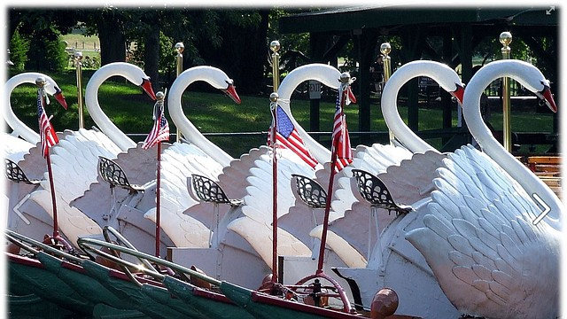 Foto: Swan Boats of Boston Facebook