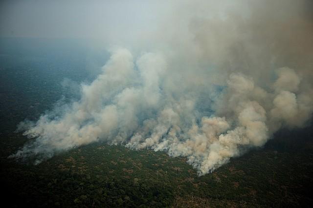 AMAZONÍA. Vista aérea de varias columnas de humo, el viernes 23 de agosto, en la selva amazónica de Porto Velho, Rondonia. La escasa visibilidad dificulta el tráfico aéreo y la magnitud de los incendios desprendía una humareda que llegaba a unos 800 metros de altura. | Foto: Efe/Joédson Alves