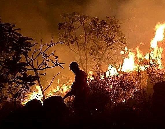 AMAZONÍA. Fotografía fechada del 21 de agosto de 2019, facilitada por los Bomberos del Estado amazónico de Pará, combatiendo un incendio en la región de Santarém, Brasil.